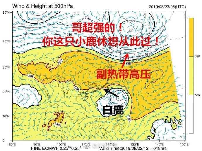 """台风""""白鹿""""预警信号升级为橙色!请做好防御措施,附台风路径!"""