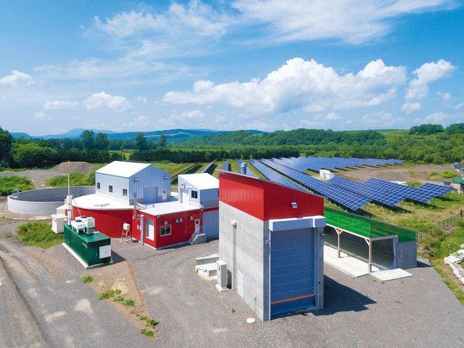 北海道试图从牛粪中提取更多的甲醇