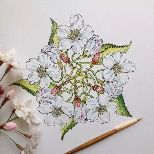 画的花美翻了,针管笔和水彩也可以完美结合