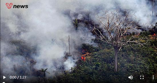 如果亚马孙雨林被大火烧光 多地四季交替或将消失