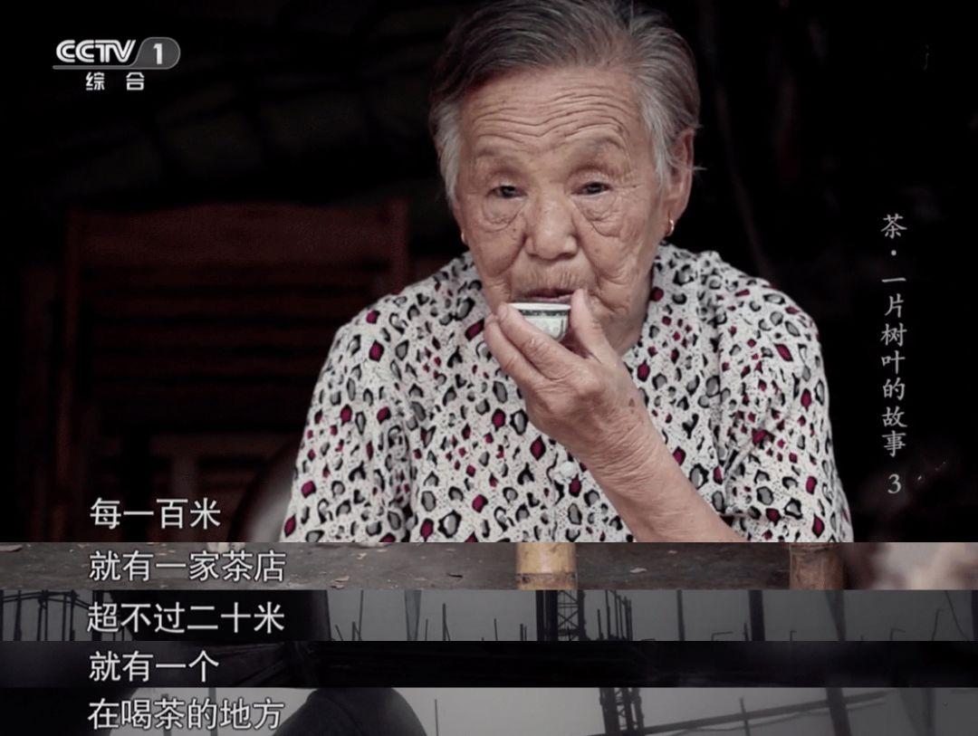 茶一片树叶的故事2_千万别跟潮汕人喝茶_图片