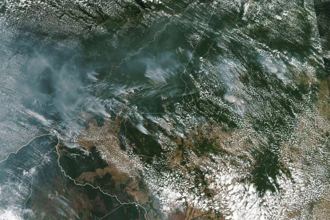 亚马逊雨林为何燃烧?