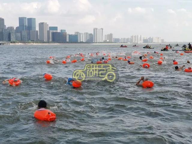 横渡钱塘江,有人游一半,居然抓了一条大鱼!至少三斤重,哈哈哈