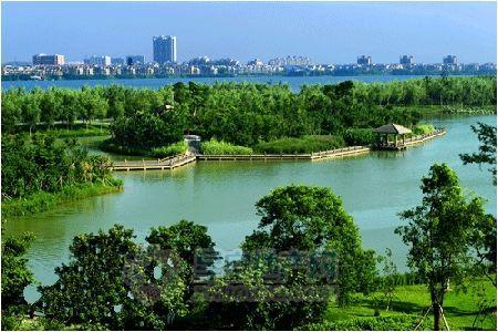 保护+修复,让湿地美成诗 合肥积极创建申报国际湿地城市