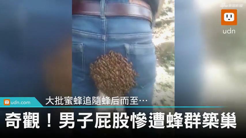 <b>奇观!小伙#臀部惨遭蜜蜂群筑巢#  赶都赶不走</b>