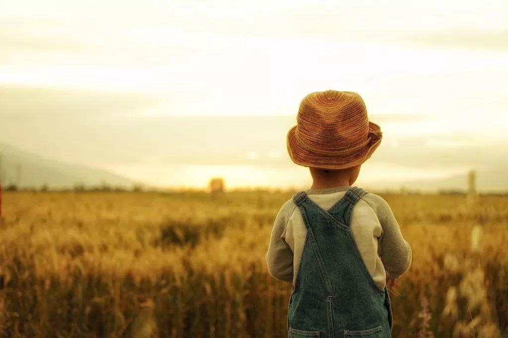 一个家庭最高级的炫富,是养出懂得感恩的孩子