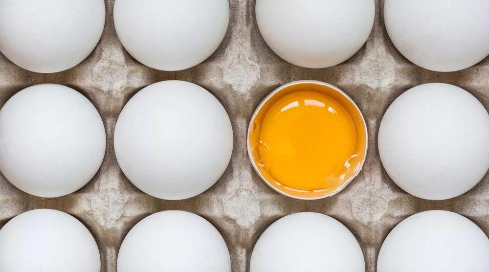 10个关于常识的人人作文都该知道!高中材料范文鸡蛋图片