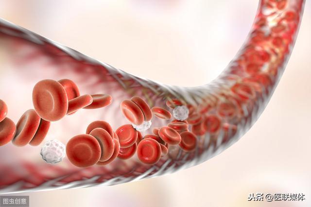 40岁以后,少吃哪几类食物才能使血管不被堵塞?