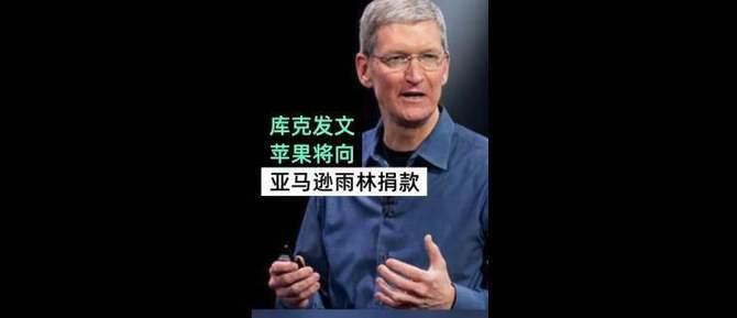 这波很强!苹果捐款修复雨林 库克:火灾让我很悲痛_亚马逊