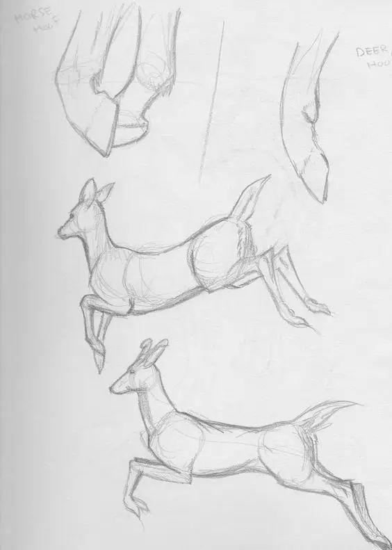 可爱北极熊简笔画_1000个简笔画教程,够你画2019一整年了!_画法
