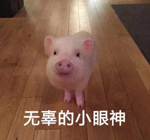 问价格│江阴人,下半年你可连黑米都吃不起了!莲子可以.事务上涨和猪肉同煮吗?图片