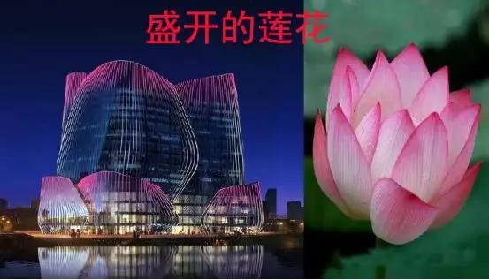 青山风水 | 郑州龙子湖,骑在灵龟背上的太格茂!