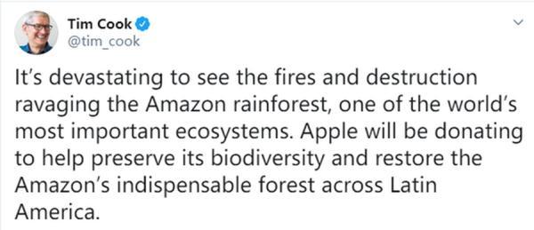 库克:计划向亚马逊雨林捐款 火灾频发令人痛惜_徐一禾