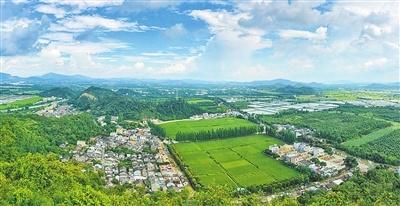 珠海乡村振兴取得阶段性成效 将全力打造生态宜居示范样板