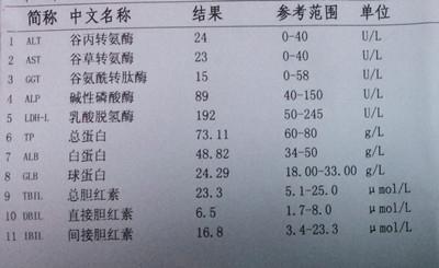 通过慢性乙肝指南,大三阳与小三阳,了解防治问题