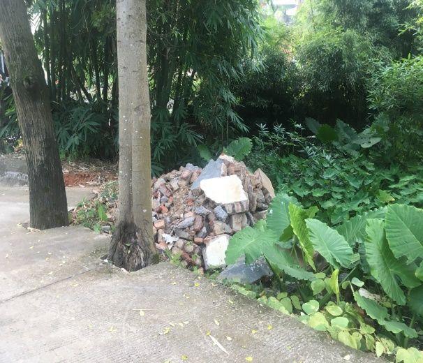 蛟湖村蛟湖48-1號對面建筑垃圾亂堆圖片