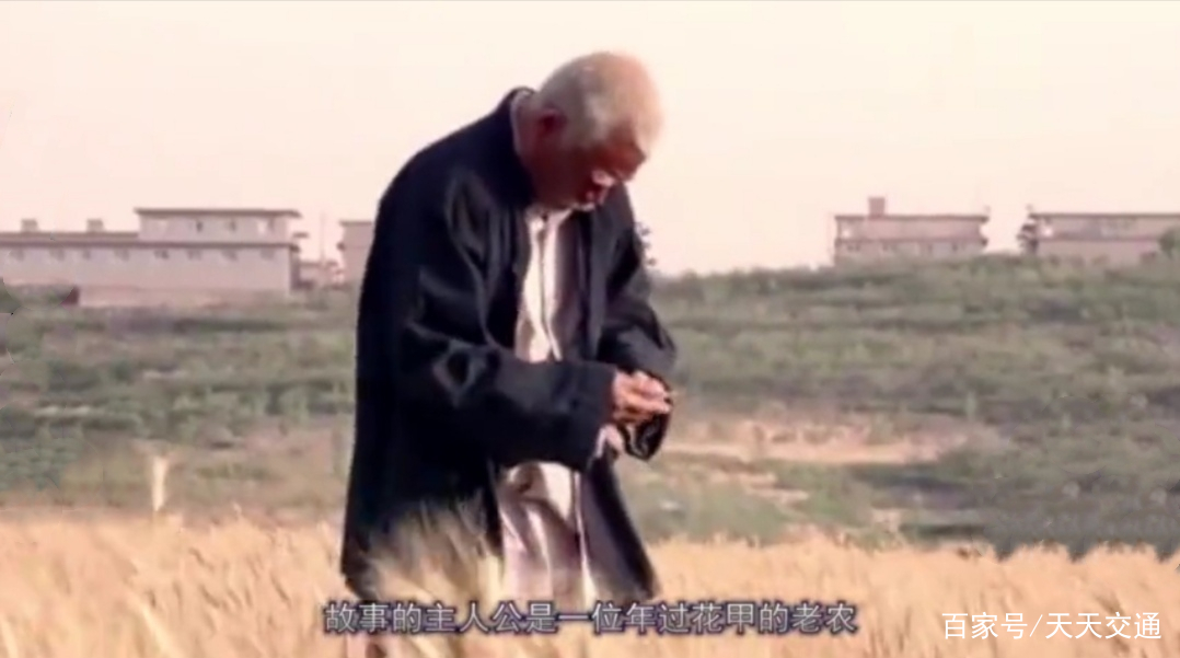 """六旬老汉肚子疼,在地里方便的时候,却拉出两个""""世界之最"""""""