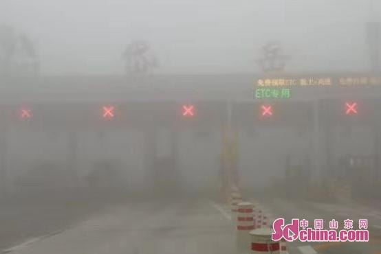 山东发布大雾橙色预警信号 局地能见度不足50米