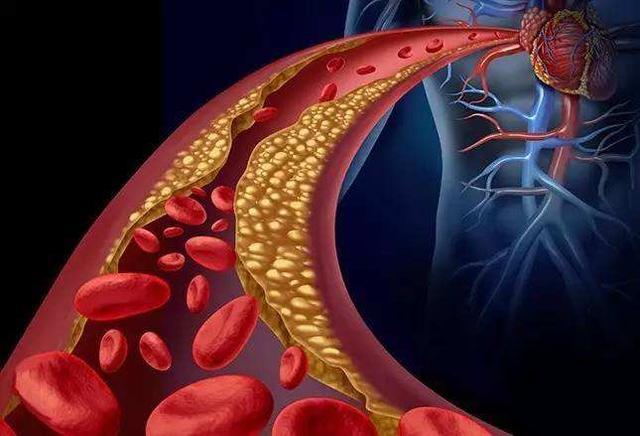 叶酸,孕妇,蛋氨酸 1p1p.work