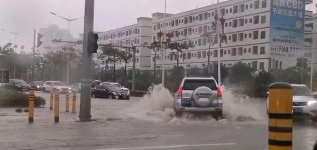 """""""白鹿""""刚跑""""杨柳""""又接班!新台风生成,接下来博罗的天气……"""