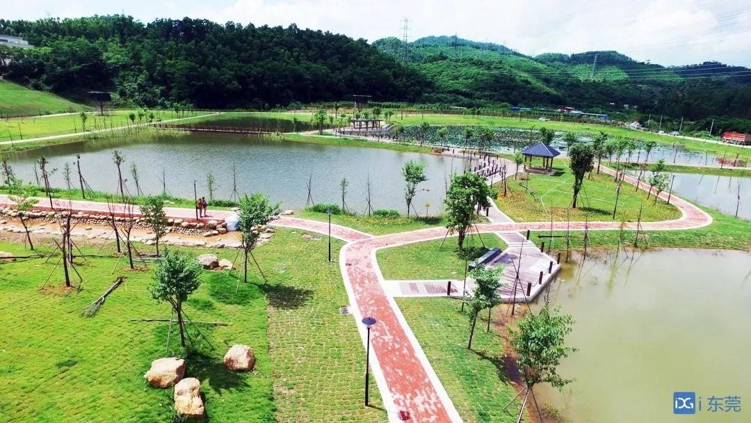 靓爆镜!东莞新增一个打卡地,这个湿地公园预计下月开放