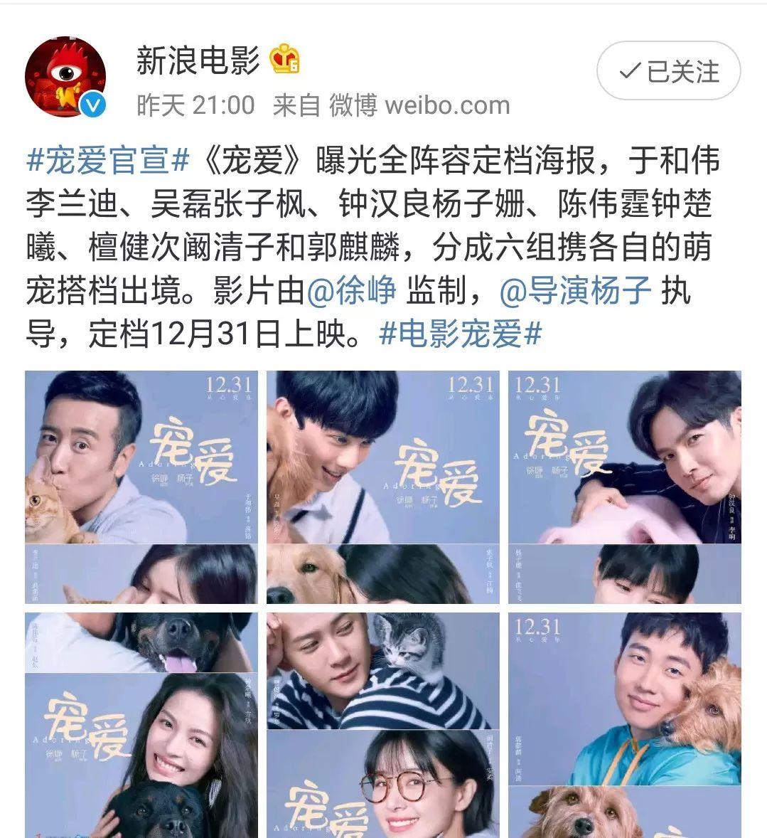 徐峥大片《宠爱》定档!吴磊阚清子陈伟霆治愈笑容!PK陈思成?