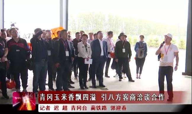 【壮丽70年 奋斗新时代】青冈玉米香飘四溢 引八方客商洽谈合作