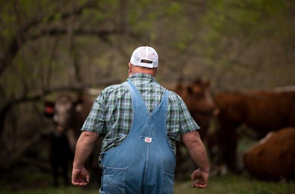1033个美国农场破产后,美国农业经济骗局或正被揭开,事情有进展
