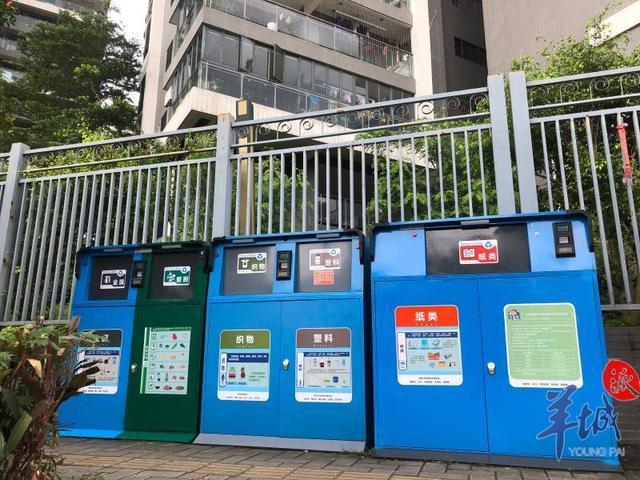 餐饮业也要垃圾分类了!老广每天仅外卖垃圾多达16.8吨