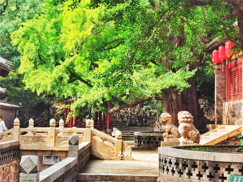 中国古代皇家园林和私家园林各有什么特点_易发生活网