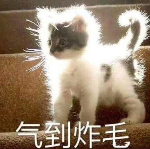 李姐笑話:周未回家看看,幫媽媽刷刷筷子洗洗碗 作者: 來源:李姐講笑話
