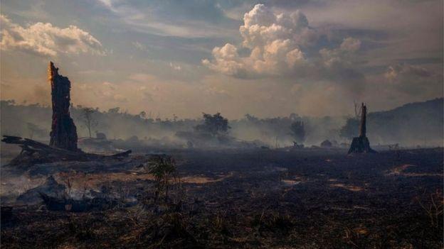 亚马逊火灾仍在继续:南美多国近日将商讨对策