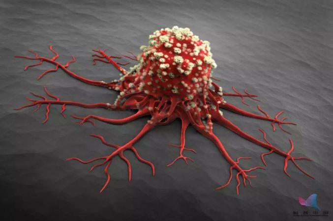 人人都怕癌,但癌细胞也怕你,最怕你做这些事!