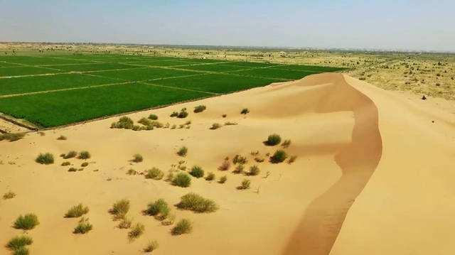 """""""神奇胶水""""被中国研发,不仅沙子变土,还将沙漠变成良田?"""