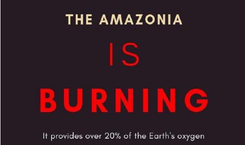 【热点聚焦】比亚马逊大火更严重的是这个区域
