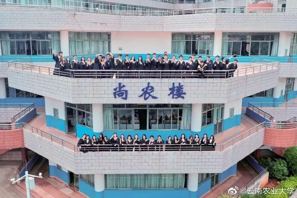有一种优秀,叫云南农业大学图片