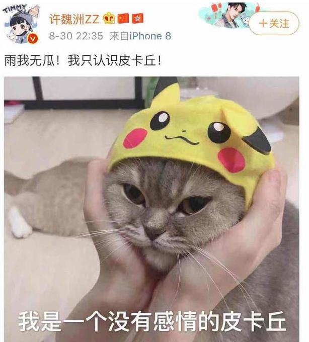 许魏洲否认和鹿依luna绯闻:雨我无瓜