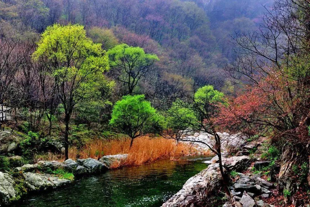 用硬科技手段保护大秦岭生态环境图片