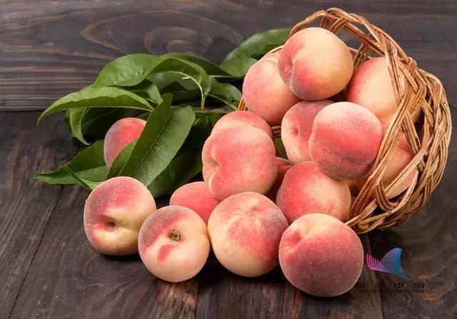 桃子和这些食物一起吃会产生剧毒?很多人对此毫不知情…