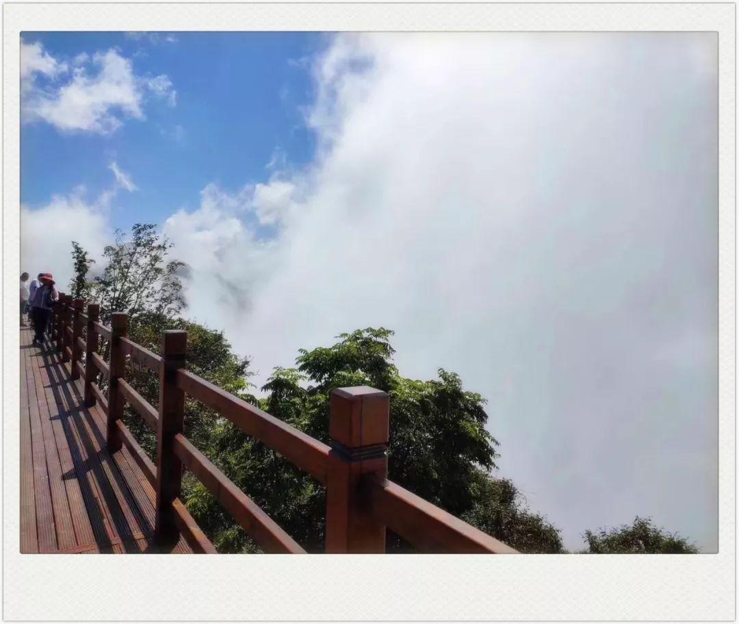 黄埔龙头山森林公园_腾讯体育