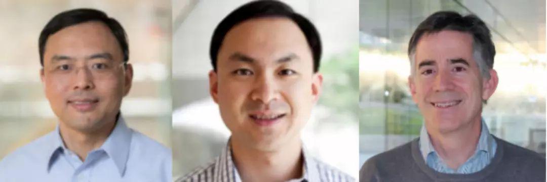 华人科学家造全球首个存算一体通用AI芯片,类脑计算关键元件再获验证