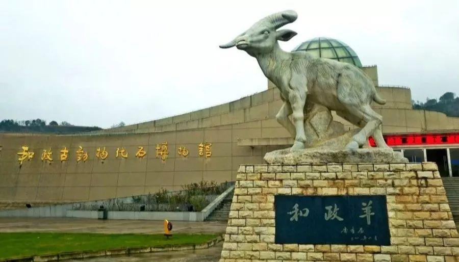撸撸色aaaa_和政古动物化石博物馆  国家aaaa级旅游景区  科研,珍藏,展览价值.