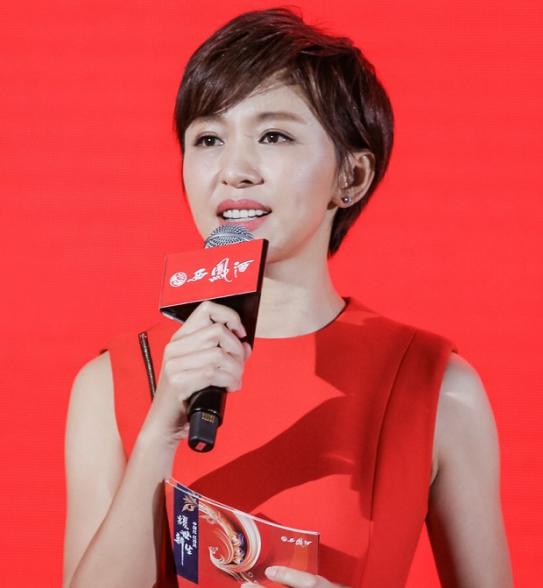 央视主持人欧阳夏丹一身红裙主持节目,42岁身材纤细令人羡慕
