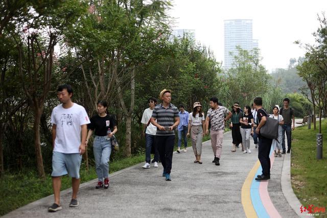 """""""读城""""大V见证公园城市:在成都生活太幸福了,我们不想走"""