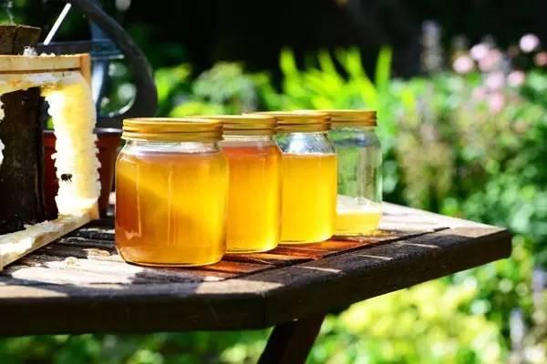 蜂蜜yabo888体育功效,这样吃蜜蜂能治11种病,还能减肥和美容你知道吗?