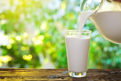 骆驼奶的营养价值会比牛奶高吗?你觉得口味有什么差别呢?