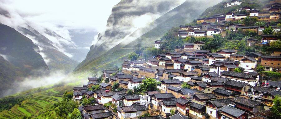 宣讲家文稿丨坚持走中国特色乡村振兴之路