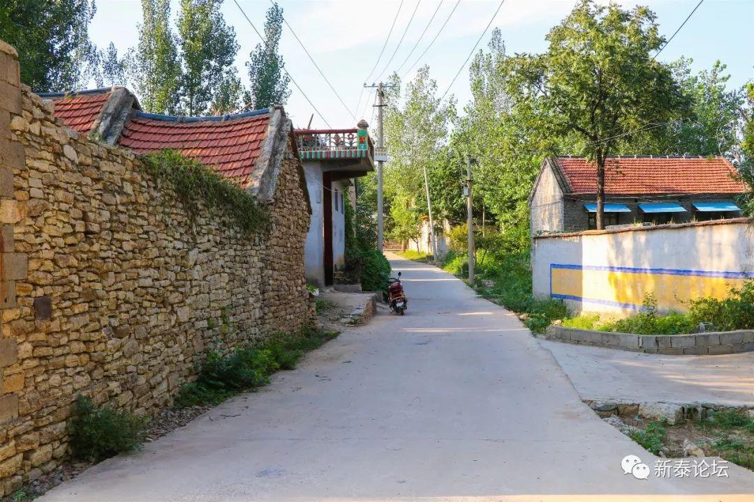 新泰人口最多的村庄_人口普查
