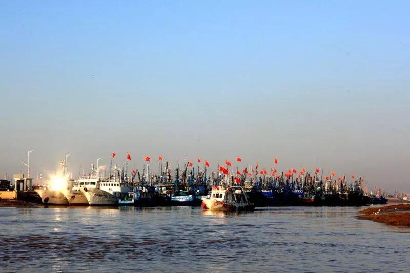 美不胜收!渤海开海,沧州新鲜海产品,等你享用!