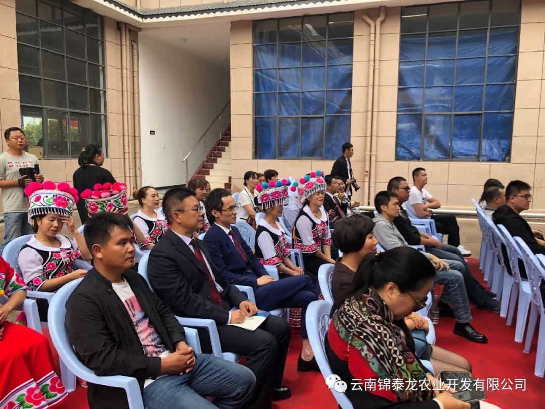 云南锦泰龙农业开发有限公司正式挂牌成立